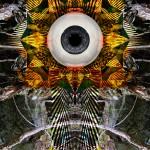 Eyespine